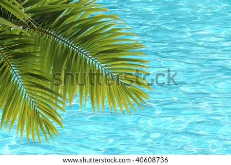 Palm tree leaves and blue carribbean water background