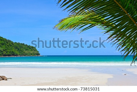 Palm tree leaves on empty dream beach and island in blue sea - stock photo