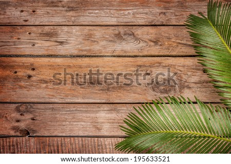 Palm tree leaves on vintage planked wood background - layout with free text space.  - stock photo