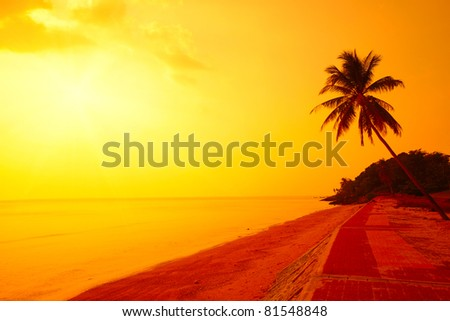 Palm tree on a beach and yellow sky with sun - stock photo