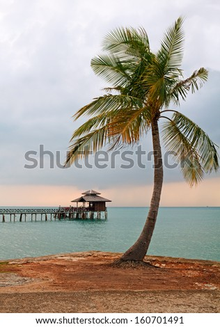 Palm tree on background Floating Restaurant at evening, Bintan, Indonesia. - stock photo