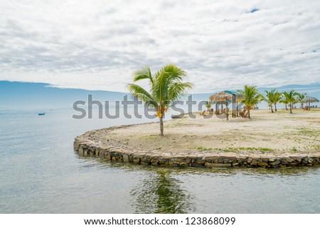 Palm tree on beach in Roatan Island , Honduras - stock photo