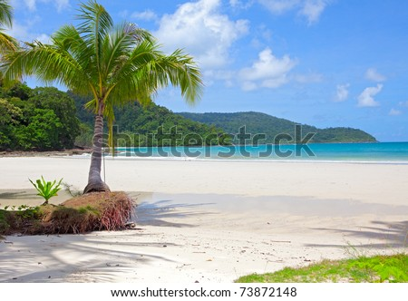 Palm tree on white sand beach and island in the sea under blue sky. Luxury vacations. - stock photo
