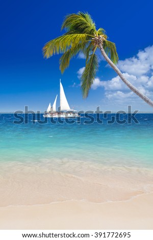 Palm tree, sailing boat, blue sky, turquoise sea and white sand in Dominican Republic