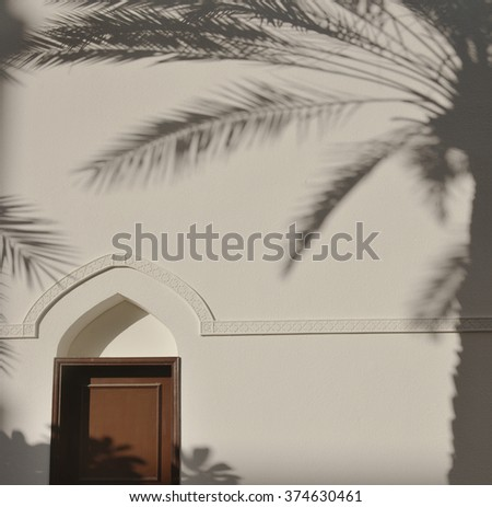 Palm tree shadow falls on a white wall. An arabic architectural details. - stock photo