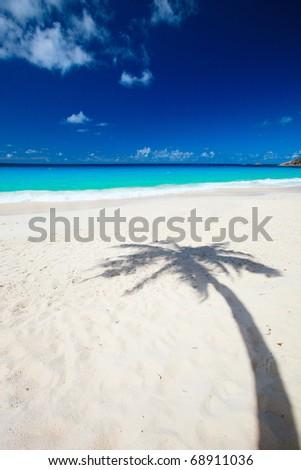 Palm tree shadow on tropical white sand beach - stock photo