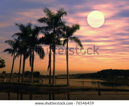 Palm tree silhouette on paradise sunset on the beach - stock photo