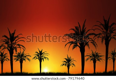 Palm tree sunset image, perfect for tropical vacation concepts. - stock photo