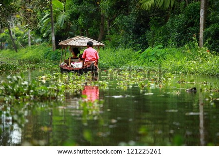 Palm tree tropical forest in backwater of Kochin, Kerala, India - stock photo