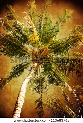 palm tree - vintage stylized picture with patina texture - stock photo
