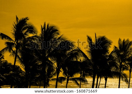 Palm trees against a golden background. - stock photo