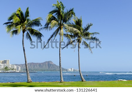 Palm trees against the blue water of the Pacific Ocean and Diamond Head. - stock photo
