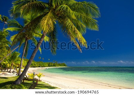 Palm trees and a white sandy beach at Fiji Islands - stock photo