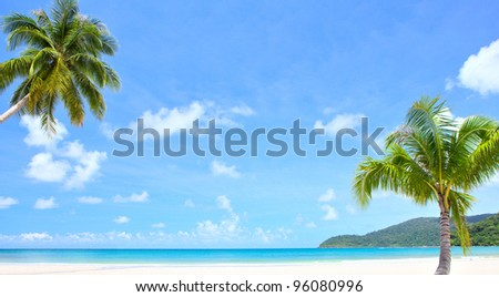 Palm trees and beach - stock photo