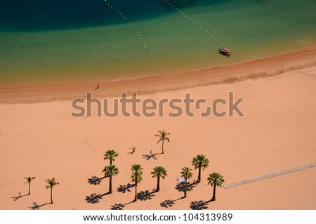Palm trees and beautiful colors of ocean water on tropical beach Playa de las Teresitas, Tenerife, Canary islands, Spain - stock photo