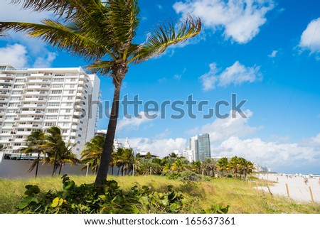 Palm trees and condos in Miami Beach. - stock photo
