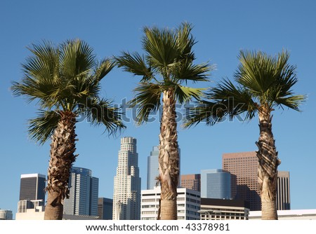 Palm trees and highrise office towers of downtown Los Angeles, California. - stock photo