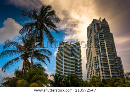 Palm trees and highrises at South Beach, Miami, Florida. - stock photo