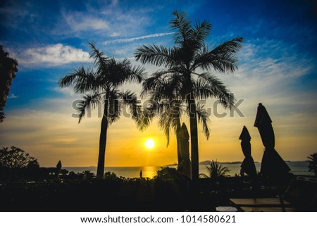 Palm trees and infinity swimming pool at a luxurious tropical beachfront hotel resort, sunset