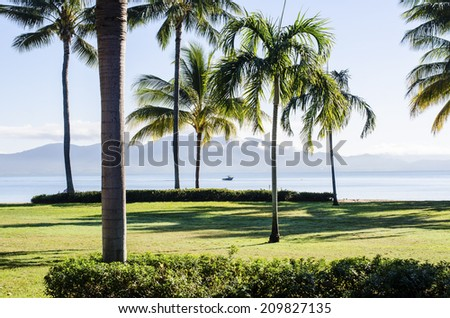 Palm trees and lawns at Townsville, Queensland, Australia with Magnetic Island in background. A boat is passing between palms in the distance. - stock photo