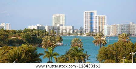Palm trees and the Miami skyline daytime - stock photo