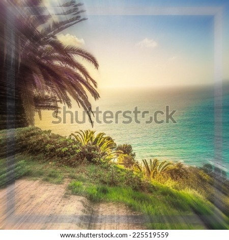 Palm trees and tropical plants grow next to the ocean. - stock photo