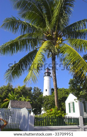 Palm trees and white lighthouse tower in Key West, Florida - stock photo