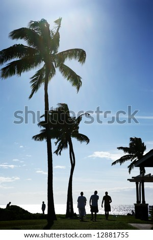 Palm trees at beautiful tropical beach in Hawaii