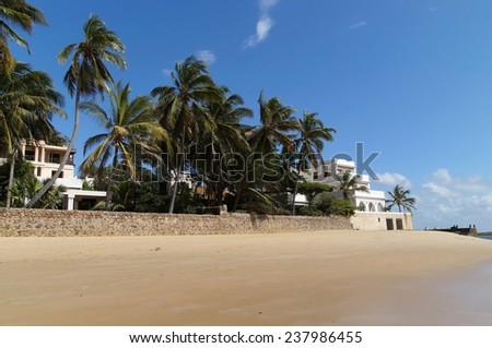 Palm trees at Shela beach, Lamu island, Kenya - stock photo