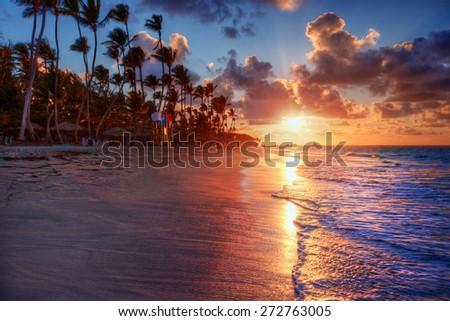 Palm trees blowing in the sea breeze at sunset on a luxurious sandy beach shore - stock photo