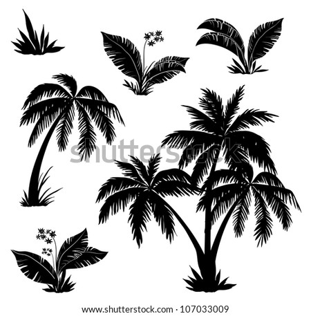 Palm trees, flowers and grass, black silhouettes on white background - stock photo