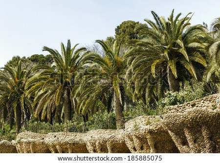 Palm trees in famous Park Guell Barcelona, Spain - stock photo