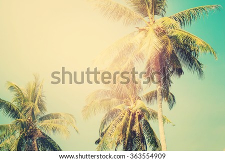 Palm trees in sun light on blue sky. Tropical  background for Holiday travel design. Toned vintage pastel effect - stock photo