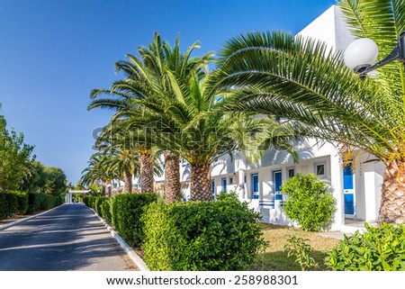 Palm trees in the territory of hotel, Greece, Kos