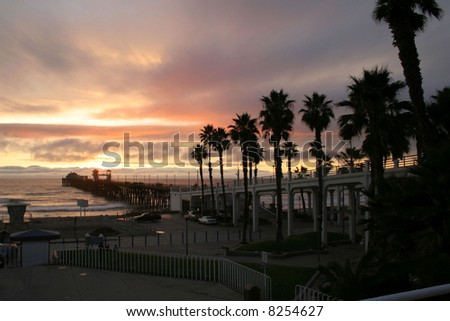 palm trees leading to pier with sunset