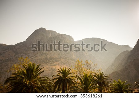 palm trees on a background of mountains in the evening, beautiful landscape of the warm region. - stock photo