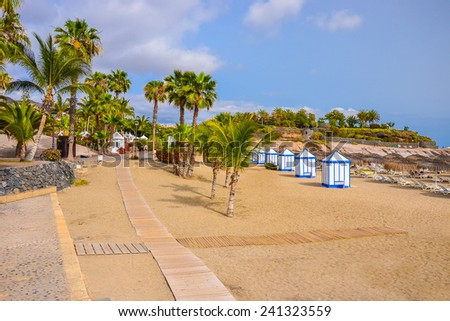 Palm trees on beautiful beach of El Duque, Tenerife, Canary islands, Spain  - stock photo