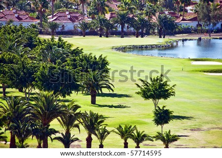 Palm trees on lake shore with houses in background in Maspalomas on island of Gran Canaria - stock photo