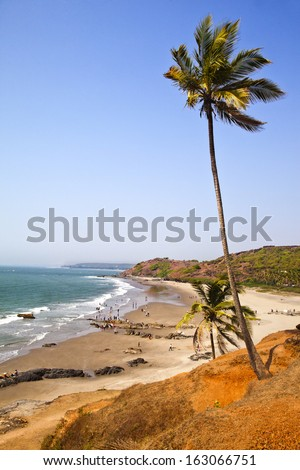 Palm trees on the beach, Vagator, Bardez Taluka, Goa, India - stock photo