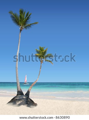 Palm Trees on the Beach with Boat in background - stock photo