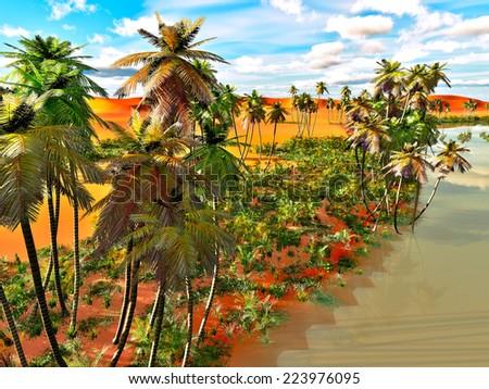 Palm trees on the desert - stock photo