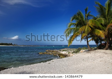 Palm trees on the tropical beach in Riviera Maya - stock photo