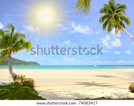 Palm trees on tropical beach under the sun. Exotic escape. - stock photo