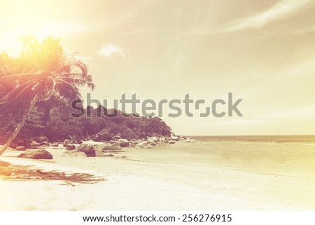 Palm trees on tropical beach. Vintage effect. - stock photo
