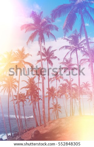 Palm trees on tropical beach, vintage toned and retro color stylized with film light leaks