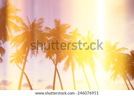Palm trees on tropical shore at sunset, stylized with film burn light leaks - stock photo