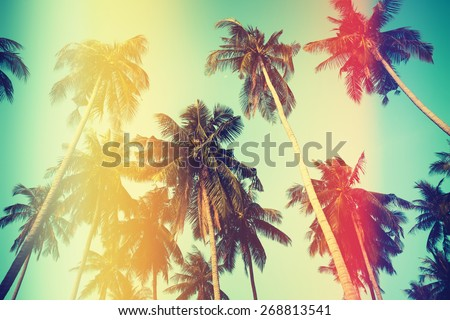 Palm trees over sky on beach, vintage stylized photo with yellow and red light leaks - stock photo