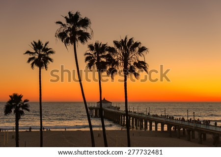 Palm trees over the Manhattan Beach and Pier on sunset in Southern California in Los Angeles. - stock photo