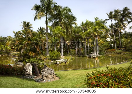 Palm trees set within a pond. Punta Cana, Dominican Republic. - stock photo