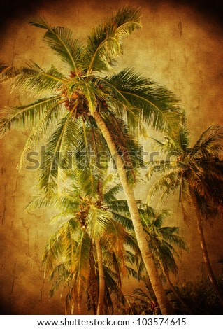 palm trees - vintage stylized picture with patina texture - stock photo